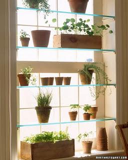 interior-wall-garden-shelves-design-by-martha-L-Mam8zk